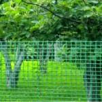сетка для ограды, сетка заборная, сетка оградная